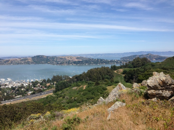 View Above Sausalito